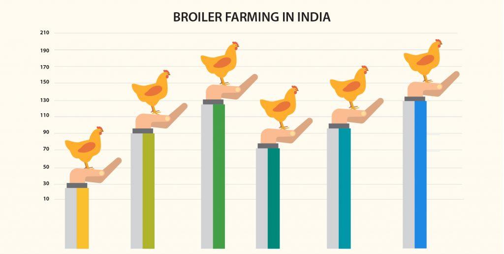 Broiler rates